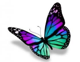 veriter-procesos de transformacion de empresas
